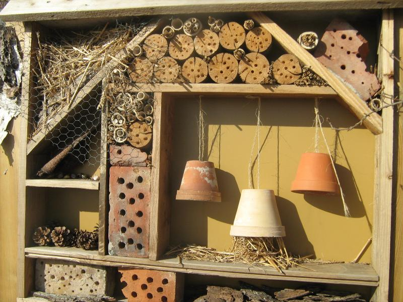 insektenhotel montessori grundschule lambert steinwich. Black Bedroom Furniture Sets. Home Design Ideas